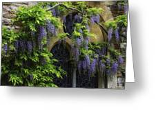 Window Behind Wisteria Greeting Card