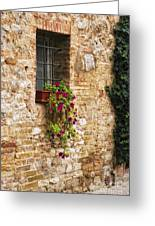 Window Box Greeting Card