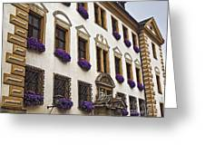 Window Boxes In Germany Greeting Card