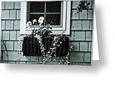 Window Dresser Greeting Card by Bonnie Bruno