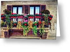Window Flower Greeting Card