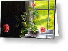 Window Geranium Greeting Card