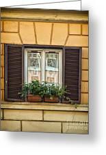 Window In Rome Greeting Card