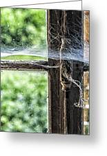 Window Lock And Spider's Web Greeting Card
