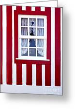 Window On Stripes Greeting Card by Carlos Caetano