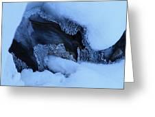 Window On Tangle Falls Greeting Card