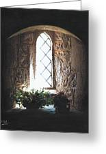 Window Solitude Greeting Card