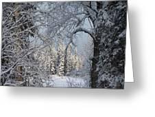 Window To Winter Greeting Card