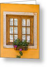 Window With Flowers Greeting Card