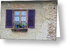 Window With Potted Plants Of Rural Tuscany Greeting Card