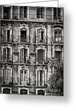 Windows And Balconies 1 Greeting Card