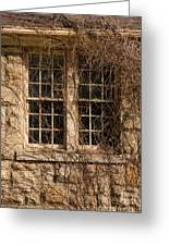 Windows And Weeds Greeting Card