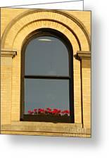 Windowsill Gerraniums Greeting Card