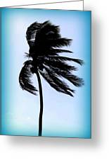 Winds Of Blue Greeting Card
