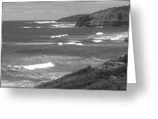 Windswept Headlands Greeting Card