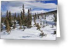 Windswept Terrain Greeting Card