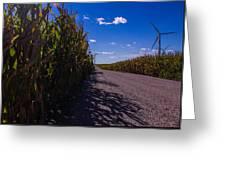 Windy Corn Greeting Card