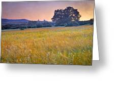 Windy Sunset At The Medieval Castle Greeting Card