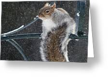 Windy Winter Day Greeting Card