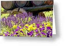 Wine Barrels At V. Sattui Napa Valley Greeting Card by Michelle Wiarda