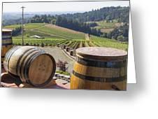 Wine Barrels In Vineyard Greeting Card