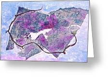 Wine Country In Northern California  Greeting Card