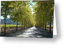 Wine Country Napa Greeting Card