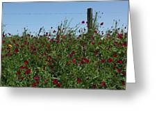 Wine Cups And Barbed Wire Greeting Card