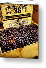 Wine Grapes II Greeting Card