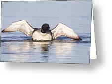 Wing Beats Greeting Card