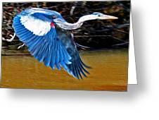 Wings In Flight Greeting Card