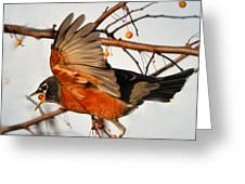 Wings Of A Robin Greeting Card