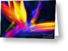 Wings Of Color Abstract  Greeting Card