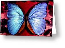 Wings Of Nature Greeting Card