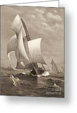 Winning Yacht 1885 Greeting Card