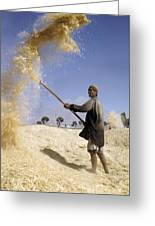 Winnowing Wheat In Iran Greeting Card