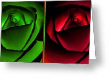 Winsome Roses Pair Greeting Card