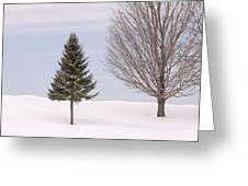 Winter 2015 Greeting Card