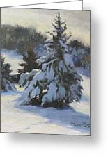 Winter Adornments Greeting Card