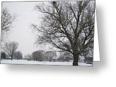 Winter Afternoon 4  2013 Greeting Card