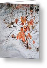 Winter Ash Greeting Card