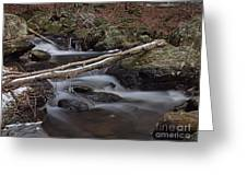 Winter At Buttermilk Falls Greeting Card