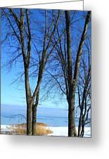 Winter At Lake Huron Greeting Card by Rhonda Humphreys