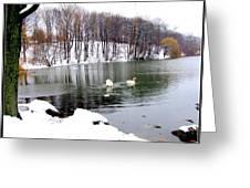 Winter At Oakland Lake Greeting Card