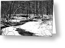 Winter At Pedelo Black And White Greeting Card