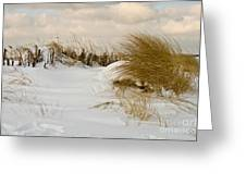 Winter At The Beach 3 Greeting Card
