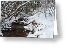 Winter At The Creek Greeting Card