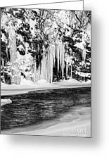 Winter At The Creek Monochrome Greeting Card
