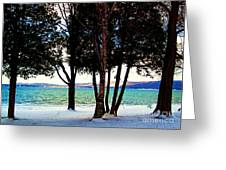 Winter At The Dunes Greeting Card