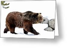 Winter Bear Walk Greeting Card